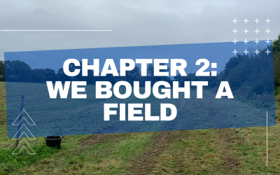 The Misadventures of a First Year Farmer – Chapter 2
