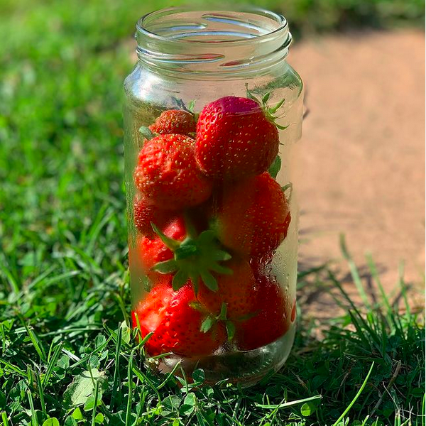 Chris Huskins Strawberries