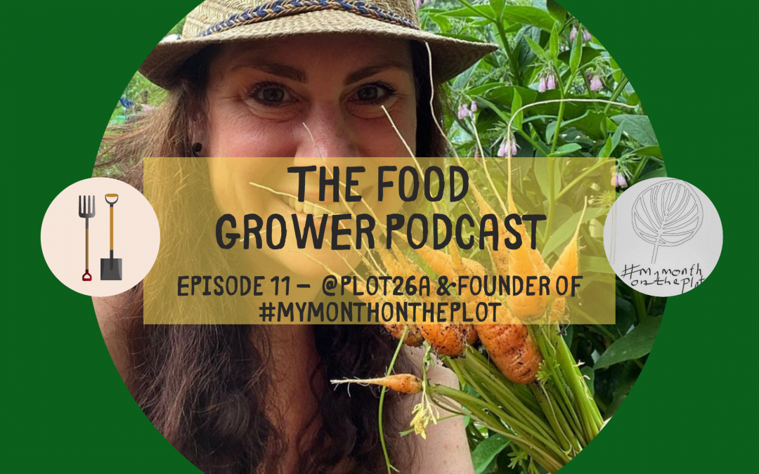 Food Grower Podcast Episode 11 – Anjee (Plot26a and Founder of #mymonthontheplot)