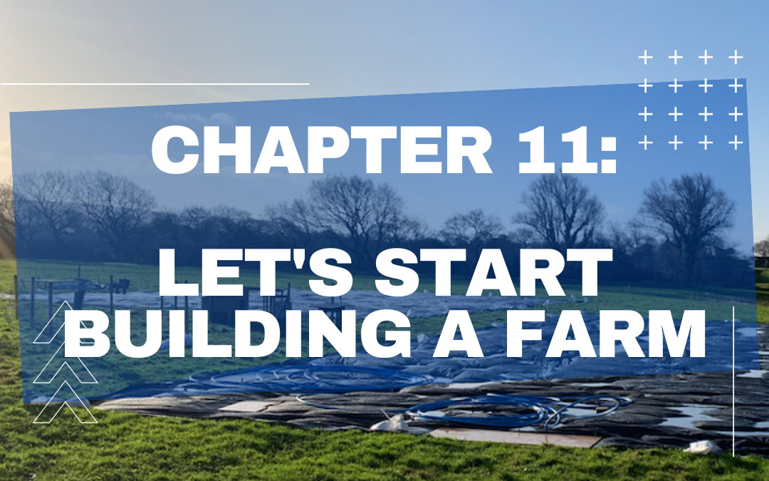 The Misadventures of a First Year Farmer – Chapter 11